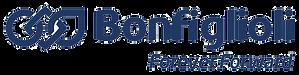 logo1 Bonfiglioli copy.png