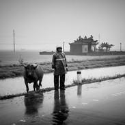 vietnam-ok-1.jpg