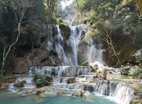 Cascades de Kuang Si - 01/02/2019