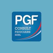 PGF CONSULT