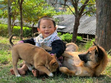 1er jour à Chiang Mai - 17/01/2019