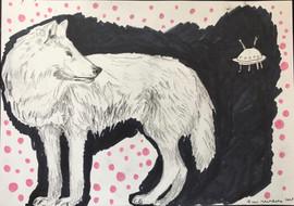 wolf & ufo