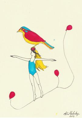 lucky coin bird balance