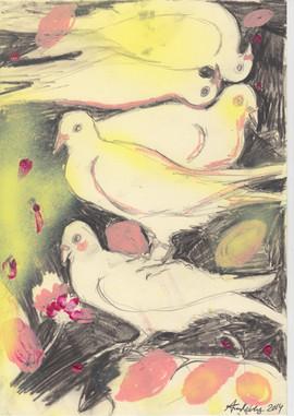 Gymnopedie doves