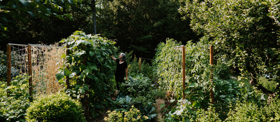 Le jardin d'Élaine