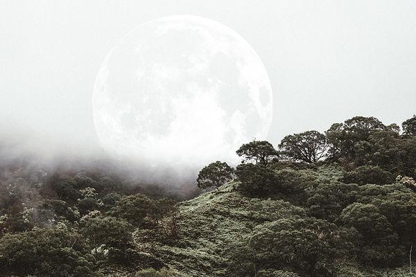 Kai - Coconut Lullaby5.jpg