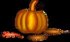 pumpkin-151743_1280.png