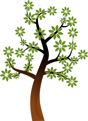 branch-1295651_1280.png