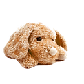 Brown%20Plush%20Toy%20Dog%20_edited.png