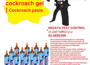 What is the best of cockroach gel | Cockroach paste