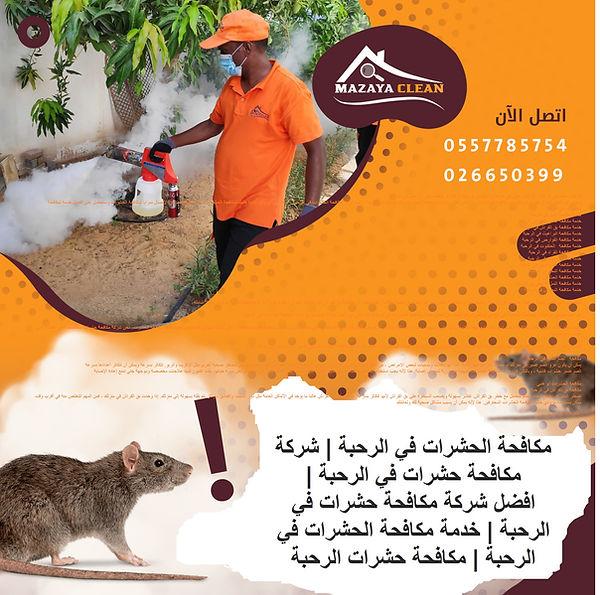 مكافحة الحشرات في الرحبة | MAZAYA PEST CONTROL | شركة مكافحة حشرات في الرحبة