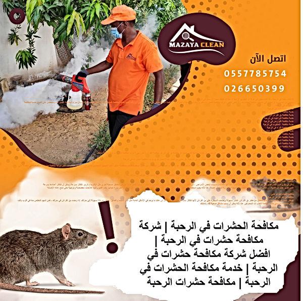 مكافحة الحشرات في الرحبة   MAZAYA PEST CONTROL   شركة مكافحة حشرات في الرحبة