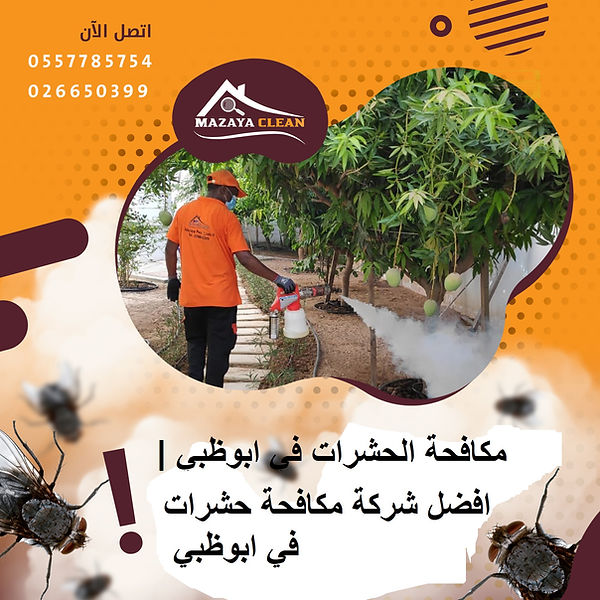 مكافحة الحشرات في ابوظبي | MAZAYA PEST CONTROL | افضل شركة مكافحة حشرات في ابوظبي | مكافحة حشرات
