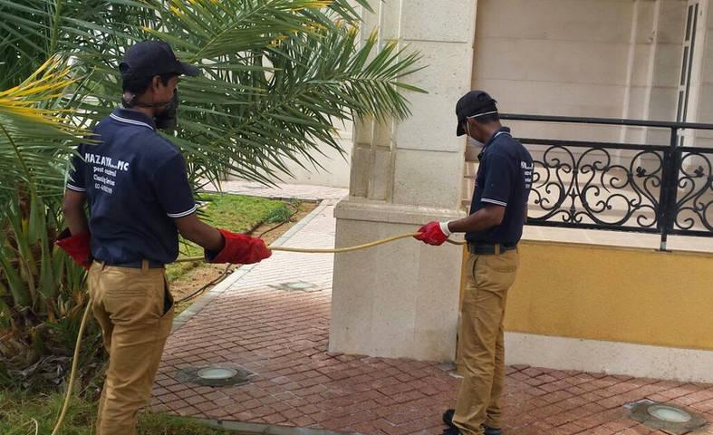 MAZAYA PEST CONTROL , pest control in Abu Dhabi , pest control service , pest control company