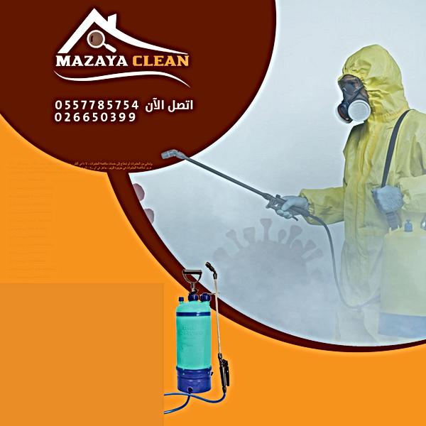 مكافحة الحشرات في جزيرة الريم | MAZAYA PEST CONTROL