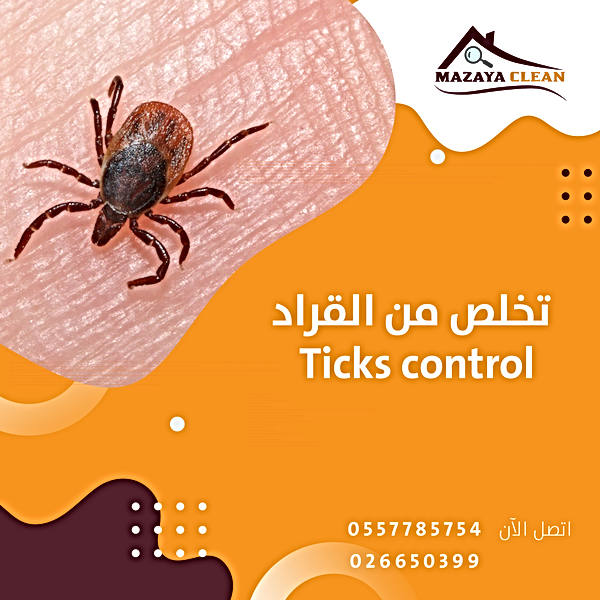Ticks control in Abu Dhabi | MAZAYA PEST CONTROL