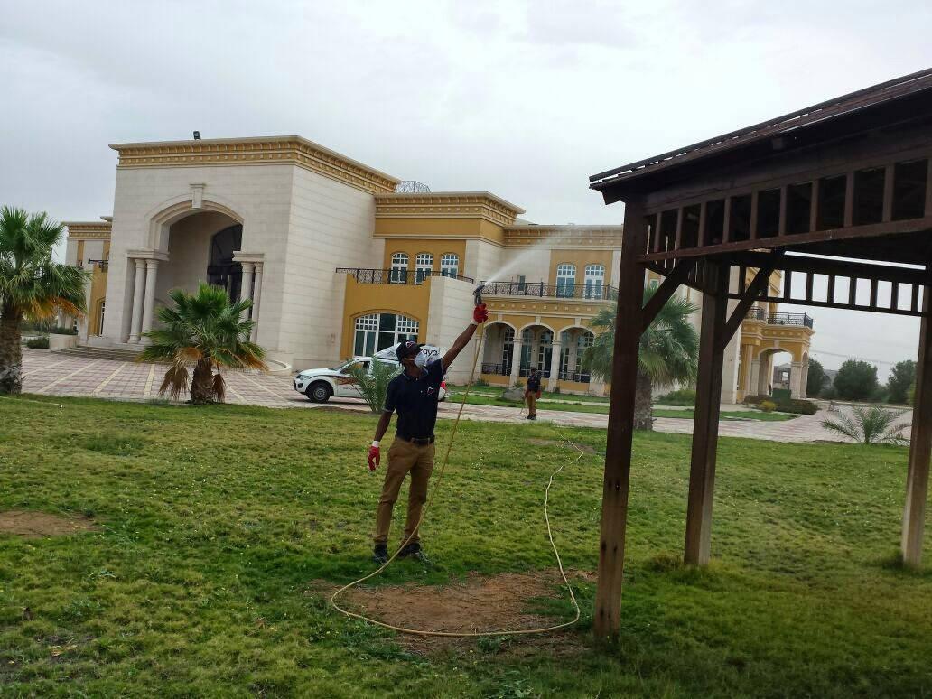 pest control service , MAZAYA pest control , pest control in abu Dhabi