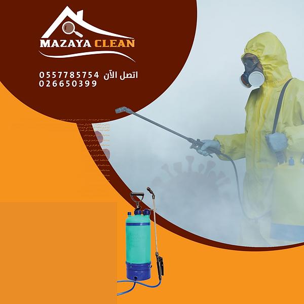 مكافحة حشرات ياس | MAZAYA PEST CONTROL |  مكافحة الحشرات في جزيرة ياس