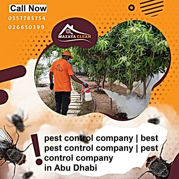 pest control company | MAZAYA PEST CONTROL | pest control company in Abu Dhabi