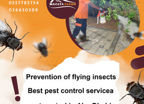 Prevention of flying insects