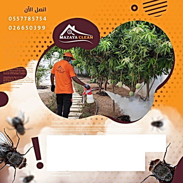 pest control Rahba | MAZAYA PEST CONTROL | pest control in Al Rahba