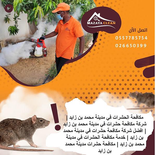 مكافحة الحشرات في مدينة محمد بن زايد | MAZAYA PESTCONTROL | شركة مكافحة حشرات في مدينة محمد بن زايد