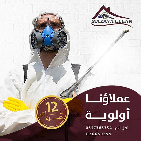 مكافحة الحشرات في مدينة شخبوط | MAZAYA PEST CONTROL