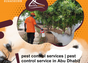 What is the best insecticide in Abu Dhabi ?
