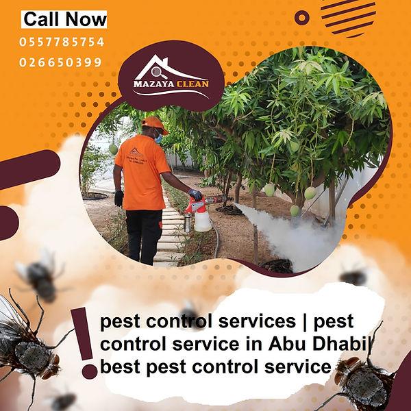 pest control service | MAZAYA PEST CONTROL | pest control service in Abu Dhabi