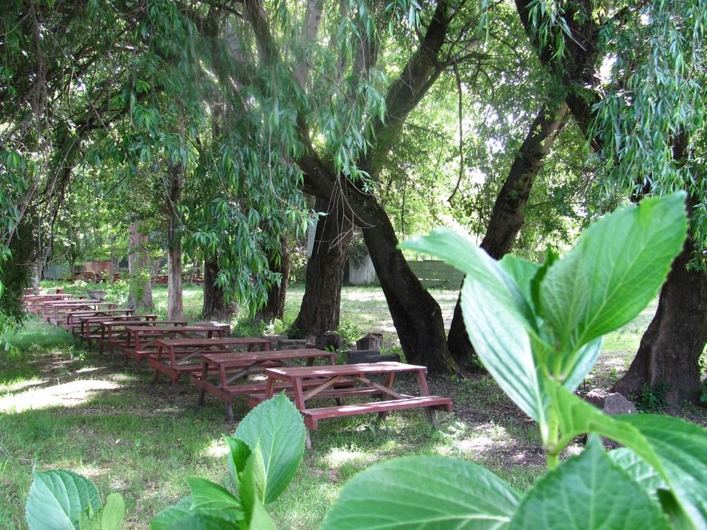 Picnic-en-Hualqui-Tobogan-056-.jpg