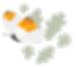 cafe-shrub-butterfly-leaves.png