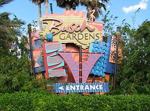 Busch-gardens-tampa.png