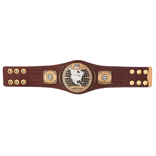 NXT North American Mini Belt