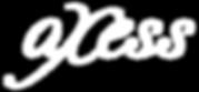 Logo Axess bl.png