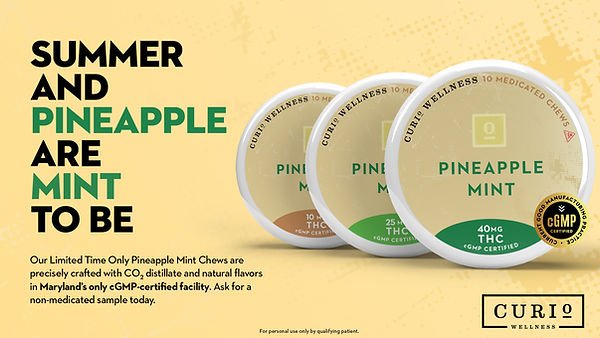 Pineapple Mint Chews Monitor Graphic.jpg