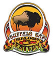 buffalo_gap_logo.jpg