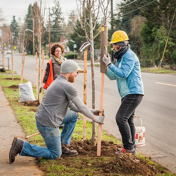 Tree Planting with Friends of Trees (Click RSVP for details)