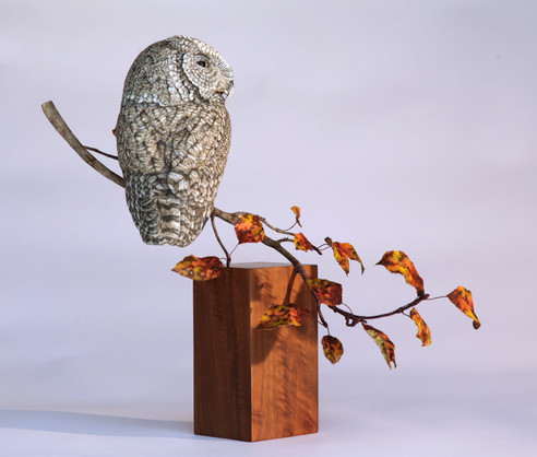 Screech Owl Carving on Branch