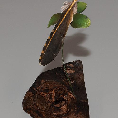 Flicker on burled black walnut