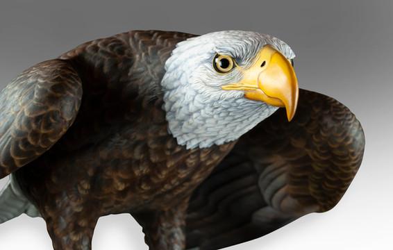 Life-Sized Bald Eagle