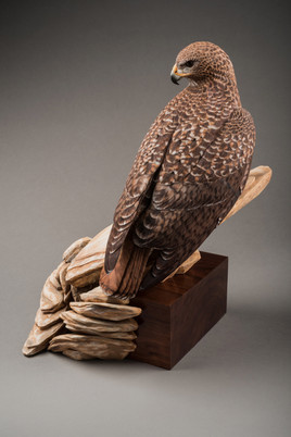 Red Tail Hawk on Rocks Carving