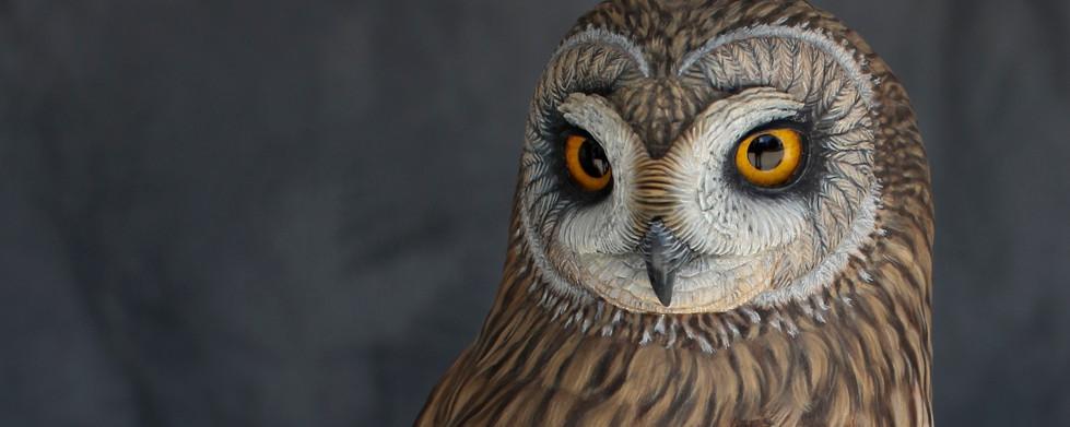 Short Earred Owl Carving