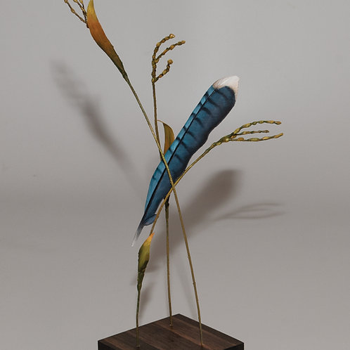 Blue Jay suspended by grass on pine