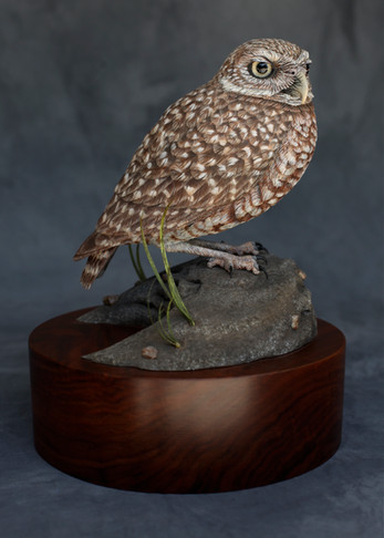 Burrowing Owl Carving