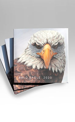 Eagle Book.jpg