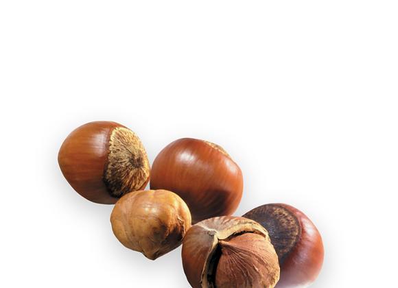 Hazelnuts In Shell 1kg