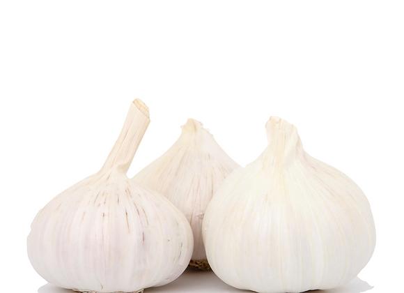 Garlic Large (Single)