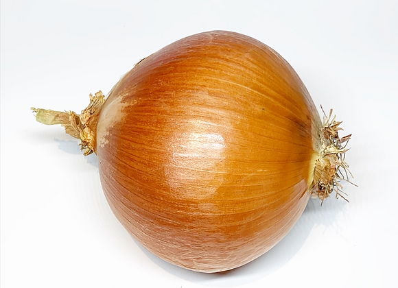 Onion Organic Large