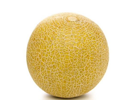 Gala Melon Single