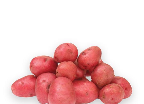 Organic Potato Red Robinta 1kg